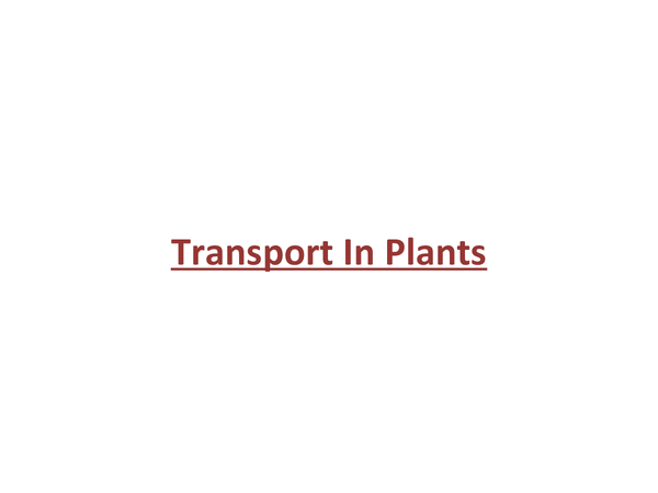 Preview of Transport In Plants