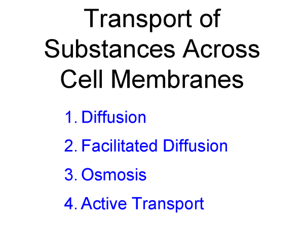 Preview of Transport of Substances Across Cell Membranes