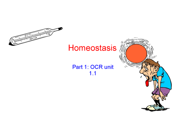Preview of Unit 1.1 communciation and Homeostasis (part 1)