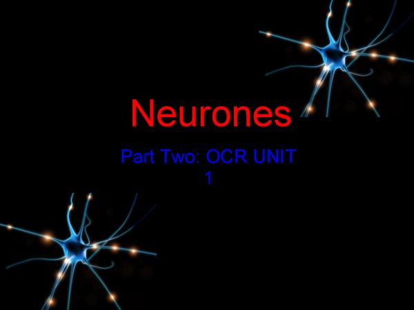 Preview of Unit 1.1 (part 2) Neurones