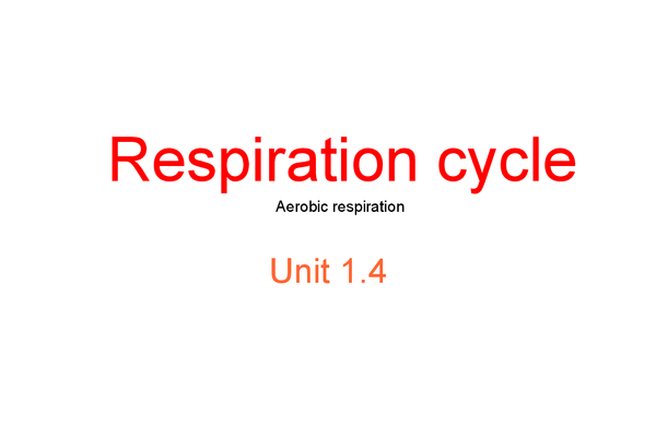 Preview of Unit 1.4 Purely The Respiration Cycle