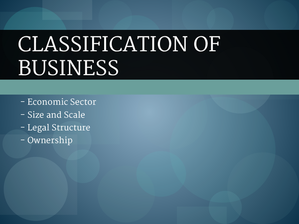 Preview of Unit 1 - Classification of business