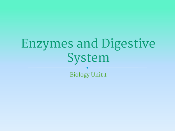 Preview of Unit 1 - Enzymes and Digestion