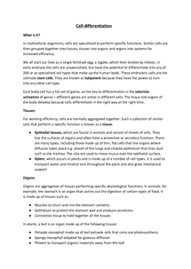 a2 level biology essay Teaching as/a2 biology practical skills as and a level biology past papers from which to select questions can be obtained from the cie teacher support.