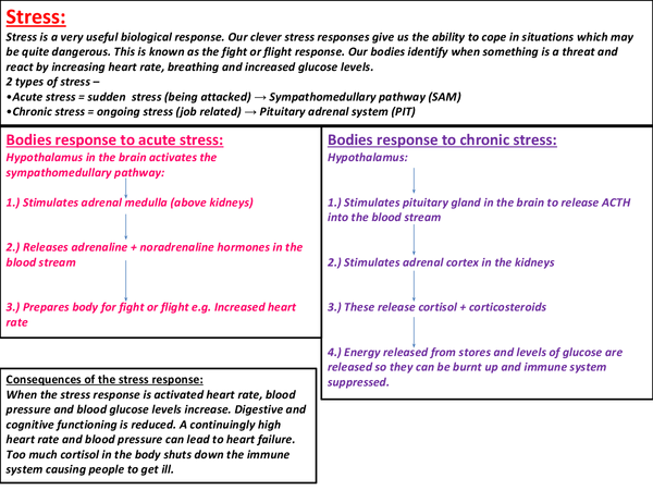 psychology as level aqa stress A-level psychology stress revision  suggestions to lower absenteeism and reduce workload - they suggested job rotation and allowing workers a higher level of.