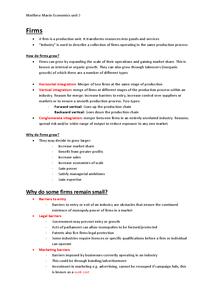 Preview of Unit 3 Economics, Edexcel