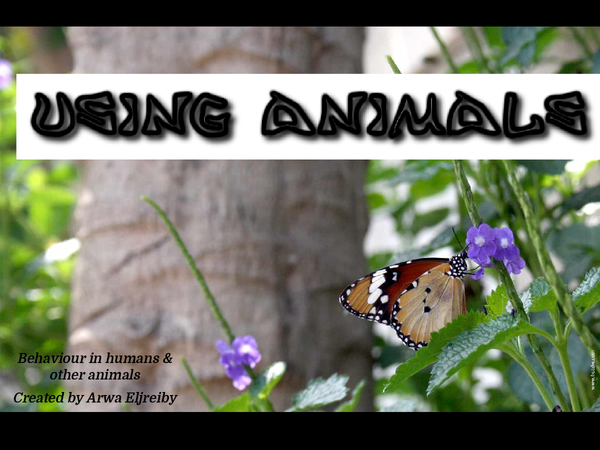 Preview of Using animals