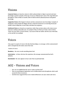 Preview of Visions and Voices Overview