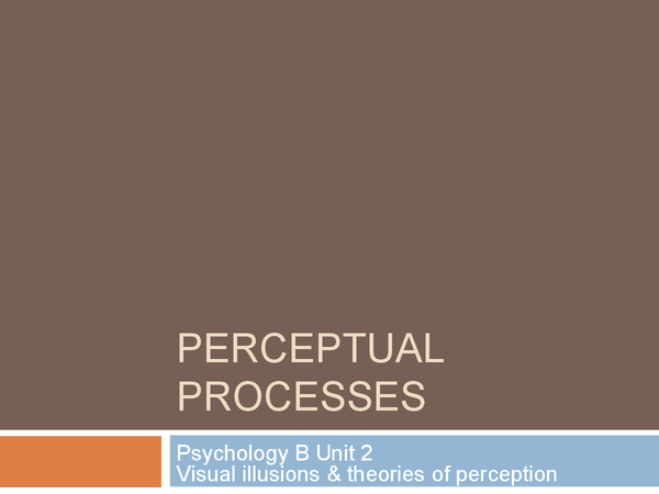 Preview of Visual Illusions & Theories of Perception