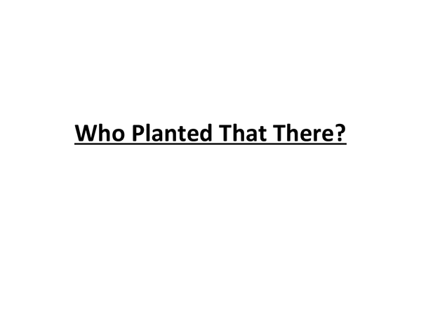 Preview of Who Planted That There?