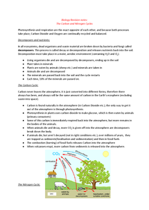 Preview of WJEC GCSE Biology 2 Carbon and Nitrogen Cycles