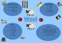 Preview of Wool