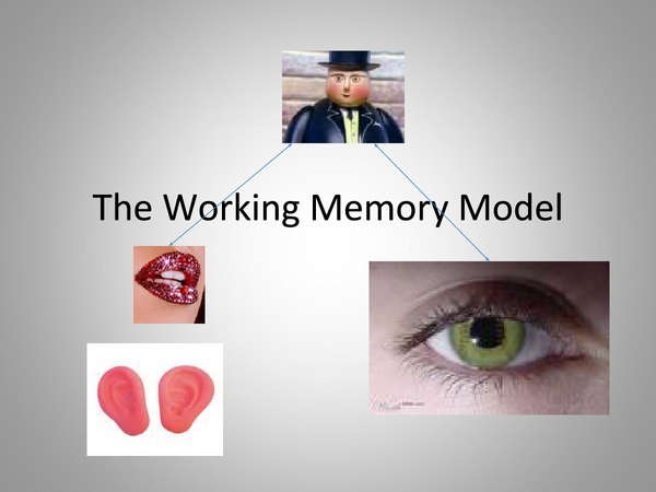 Preview of Working Memory Model