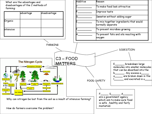 Preview of Worksheets to help you revise.