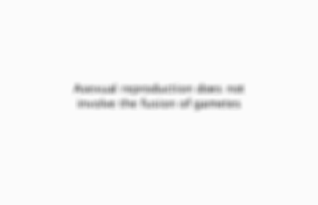 Preview of the front of card 5