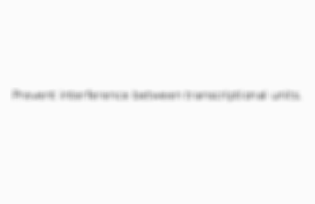 Preview of the front of card 4